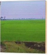 Green Fields With Birds Wood Print