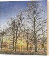 Greenwich Park London Art Wood Print