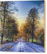 Greenwich Park London Wood Print