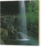 Hamilton Pool Nature Preserve Wood Print