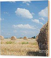 Haystacks In The Field Wood Print