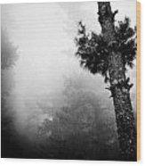 Himalyas Mist Wood Print