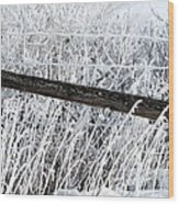 Hoar Frost On The Fence Wood Print