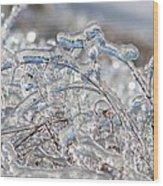Ice Storm Alfalfa Wood Print