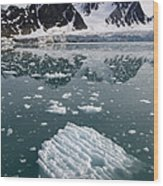 Icebergs Near The Monaco Glacier Wood Print