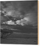 Infrared Picture Of Nature Areas In The Netherlands Dwingelderveld Wood Print by Ronald Jansen