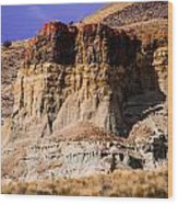John Day Fossil Beds Nations Monuments Wood Print