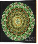 Kaleidoscope Ernst Haeckl Sea Life Series Wood Print