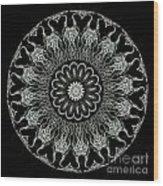 Kaleidoscope Ernst Haeckl Sea Life Series Black And White Set On Wood Print