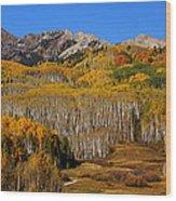 Kebler Color Show Wood Print