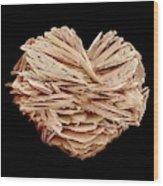 Kidney Stone Wood Print