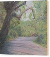 Kingsley Plantation Road Wood Print