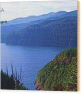 Lakes 6 Wood Print