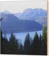 Lakes 8 Wood Print