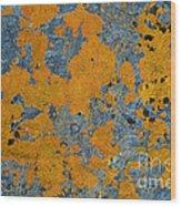 Lichened Rocks Wood Print