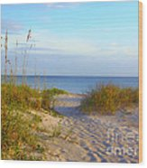 Longboat Key Beach Wood Print