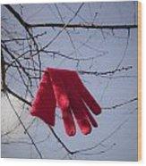 Lost Glove Wood Print