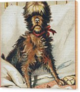 Medicine Trade Card, C1880 Wood Print