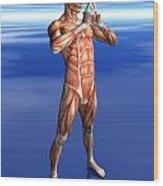 Misc. Anatomy Images Wood Print
