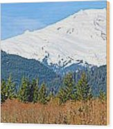 Mount Baker Wood Print