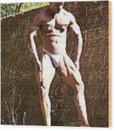 Muscle Art Wood Print by Jake Hartz