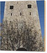 Old Sigulda Castle Ruins Wood Print
