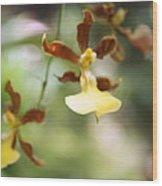 Orchids Dance Wood Print
