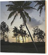 Palm Trees And Sunset Wood Print