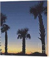 Carolina Palm Sky Wood Print