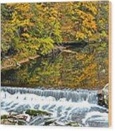 Panoramic Beauty Wood Print