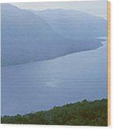 Panoramic View Of Ushuaia, Tierra Del Wood Print
