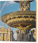 Paris Fountain Wood Print
