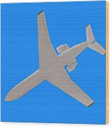Passenger Airplane. Wood Print