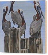 Pelicans Five Wood Print