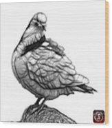 Pink Pigeon Pop Art 5516 - Fs - Bb -  Modern Animal Artist James Wood Print