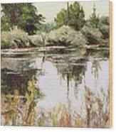 Placid Waters Wood Print