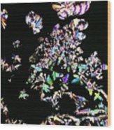 Plm Of Cortisol Wood Print