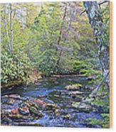 Pocono Mountain Stream Pennsylvania Wood Print