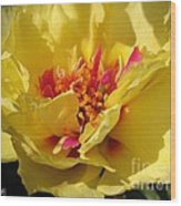 Portulaca Named Happy Hour Banana Wood Print