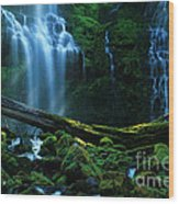Proxy Falls Oregon Wood Print