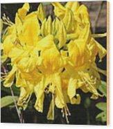 Radiant Yellow Wood Print