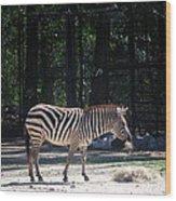 Riverbanks Zoo Columbia Sc Wood Print