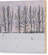 Rural Winter Landscape Wood Print