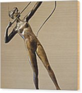 Saint Gaudens' Diana Of The Tower Wood Print