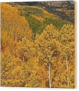 San Juan Mountains In Autumn Wood Print