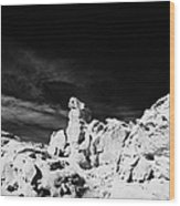 Sandstone Rock Formations At Valley Of Fire State Park Nevada Usa Wood Print