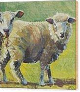 Sheep Painting Wood Print