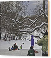 Snowboarding  In Central Park  2011 Wood Print