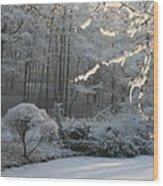 Snowy Trees Landscape Wood Print