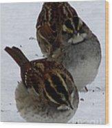 3 Sparrows Wood Print